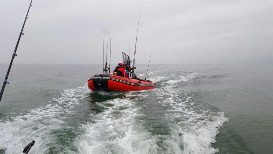 Olli (Baltic-Fisher)