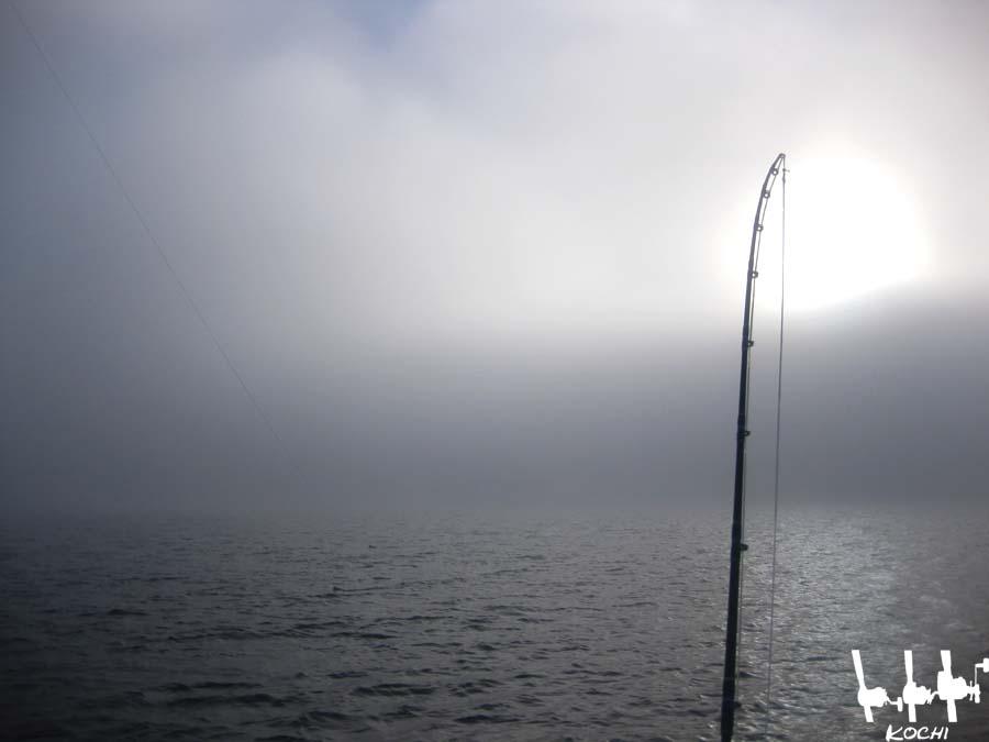 Rute im Nebel