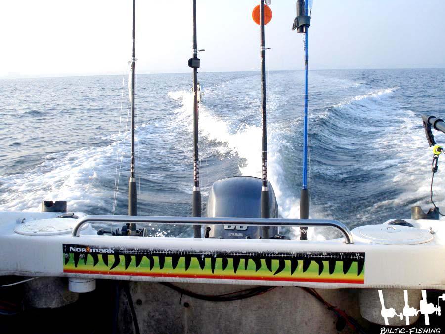 Auf ins Fanggebiet